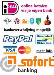 Veilig online betalen met Ideal, Bancontact, Visa, MC, Sofortbanking, overboeking