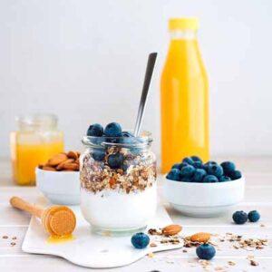 Welke soorten yoghurt starters